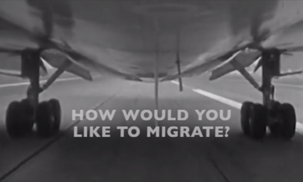 how would you like to migrate